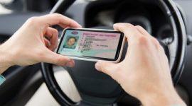 Глава ГИБДД: электронным водительским правам быть